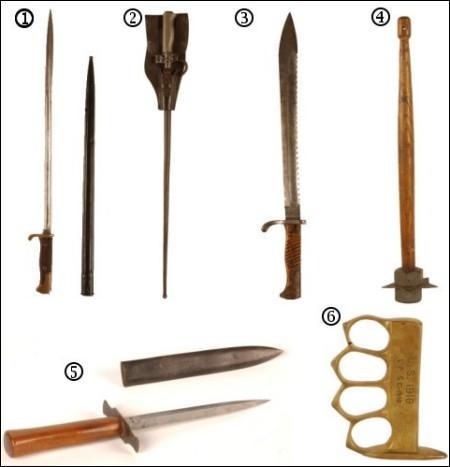 De quelle famille sont ces armes ?